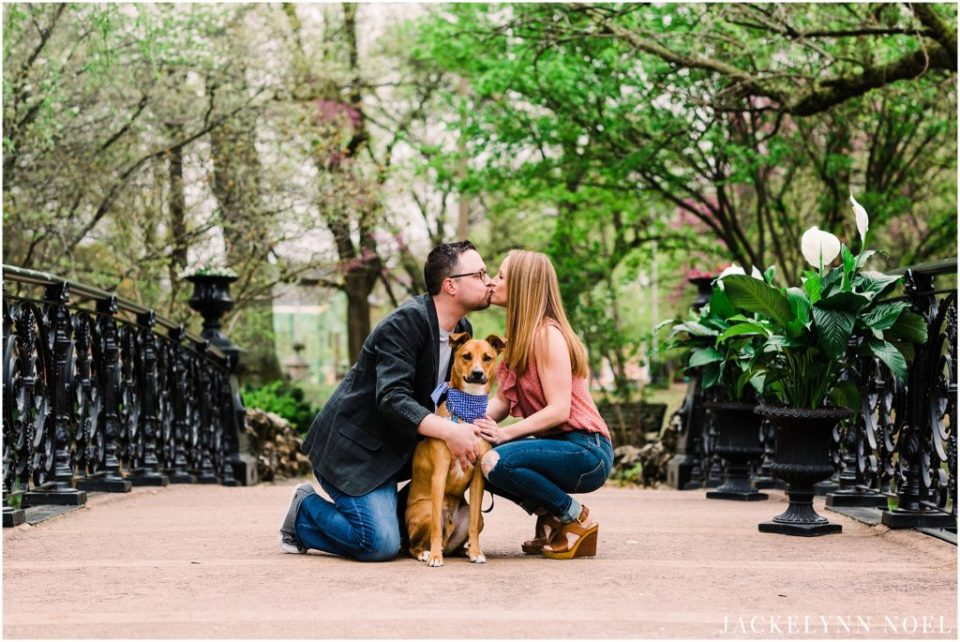 Allison & Steven - St. Louis Botanical Gardens Engagement Photography - Jackelynn Noel Photography