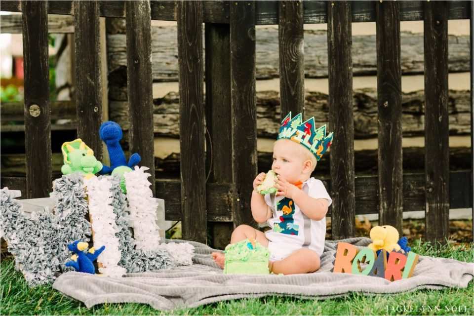 Will's Dinosaur themed first birthday