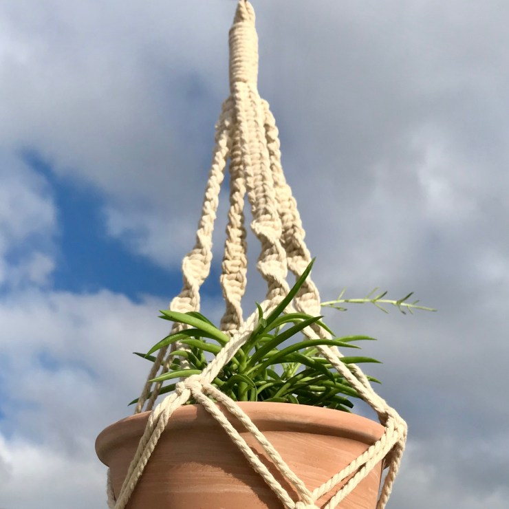 "macrame plant hanger with Peperomia ""green bean"""