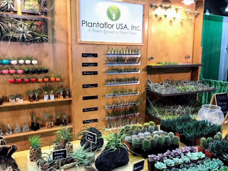 airplants and succulents and cacti from Plantaflor USA, Inc.