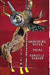 Book cover - Ambushing Water