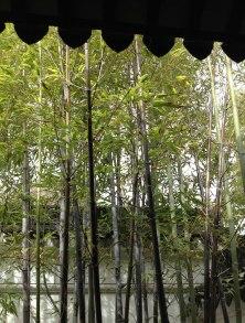 chinese-gardens24