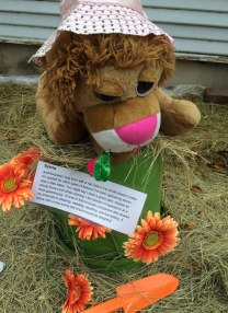 Lion loves to garden