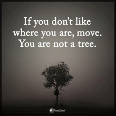 You're NOT a Tree!