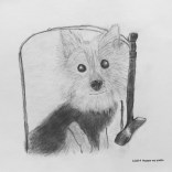 Commisoned pets