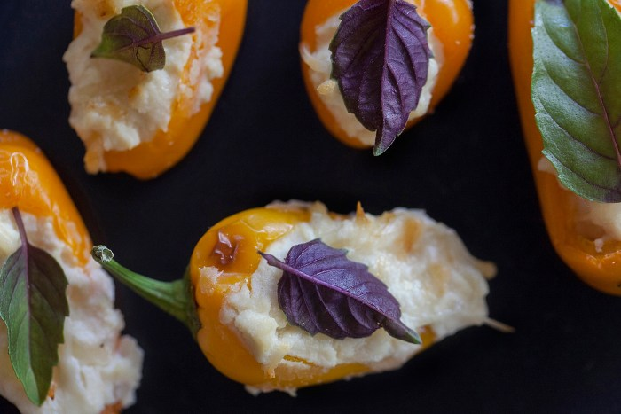 a single mini pepper stuffed with cheese and garnished with a purple basil leaf