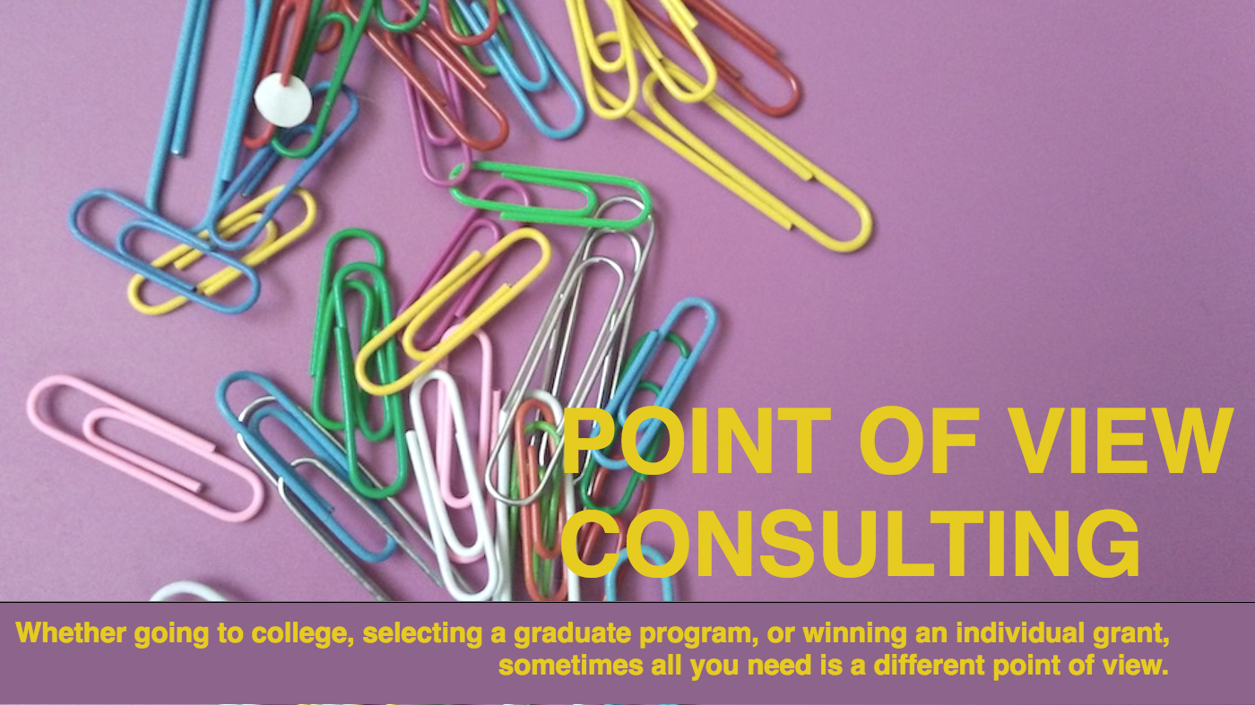 Point of View Consulting