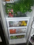 A healthy looking fridge