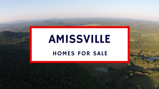 amissville virginia homes for sale