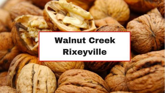 walnut creek rixeyville va
