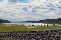 Chena River flood control