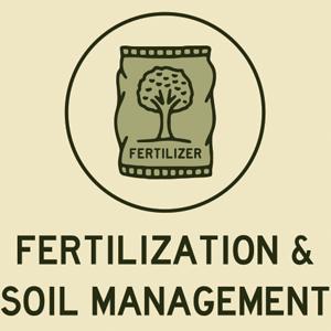 Fertilization and Soil Management