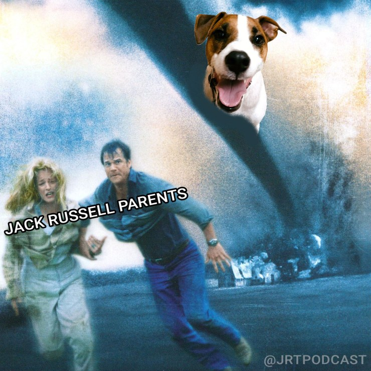 the top 9 90's movies inspired by jack russell terriers