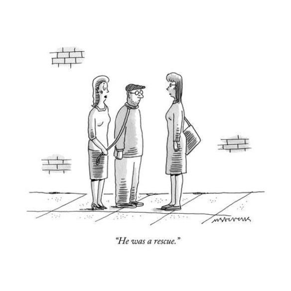 mick-stevens-he-was-a-rescue-new-yorker-cartoon_a-l-14260125-8419449