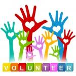 volunteer-vector