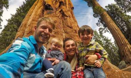 Cal-Salmon Race/ Sequoia National Park: Wild & Free Tour