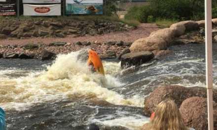 The Battle of Big Bull Falls