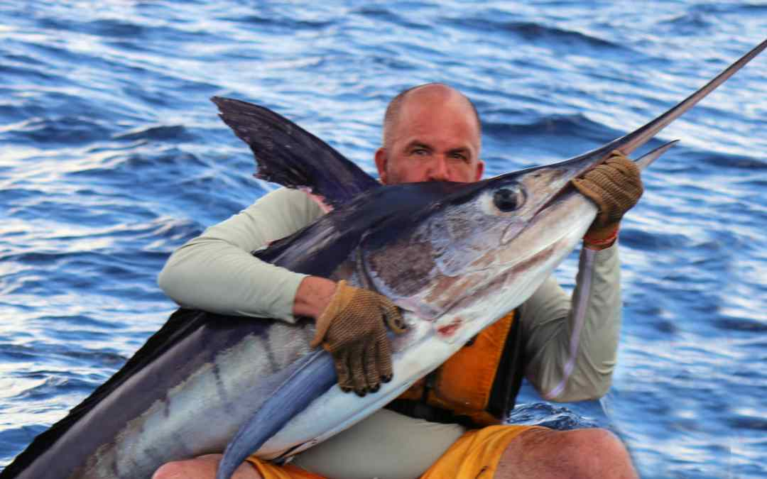 Marlin and More from our Kayaks in Baja