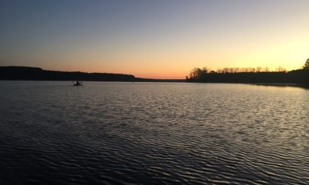 Late Winter Tournament Bass Fishing in the Bite FD