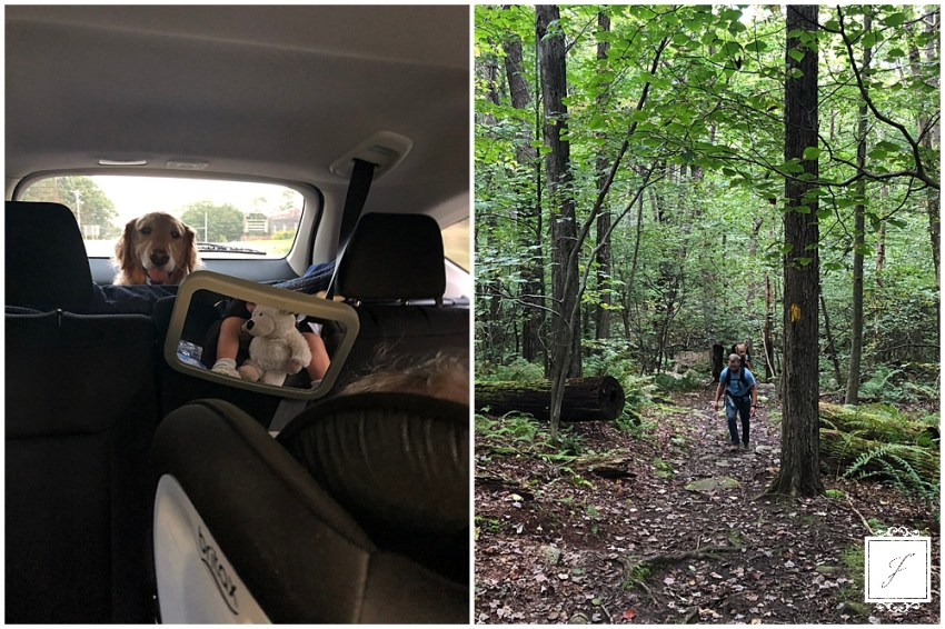 The Jacksons Weekly post with an Oakland small elopement wedding in Pittsburgh and hiking in the Laurel Highlands.