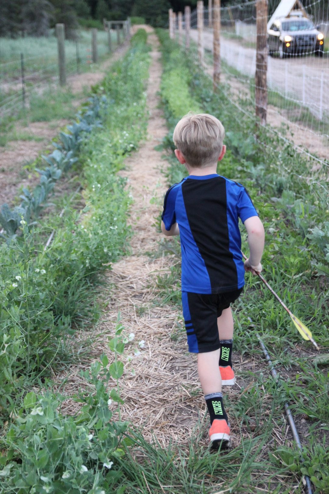 little boy running down garden rows