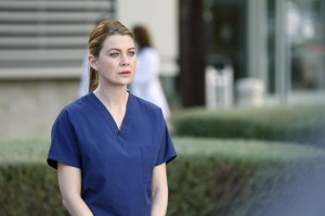 normal_scnet_greys10x24still_011