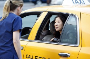normal_scnet_greys10x24still_014