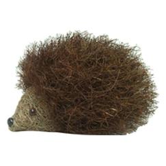 Brushwood Hedgehog