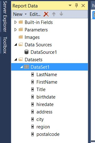 ssrs_new_dataset_created_display