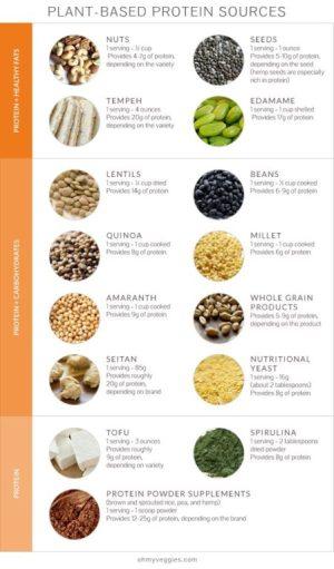 Where Do Vegans Get Their Protein-Vegan-protien