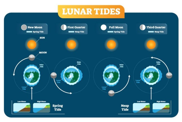 Lunar cycles and the effects on tides - what skeptics really believe.