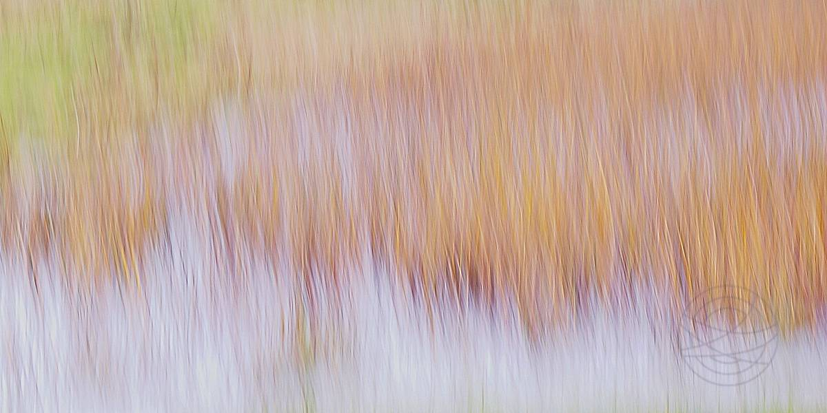 Hidden Dreams - Abstract realistic fine art landscape photograph by Jacob Berghoef