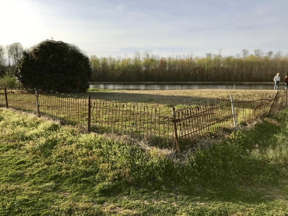 Below, Plot 1 of Hunter Cemetery looking northeast