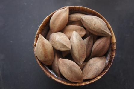 Leadership Secrets from Albay: Pili Nuts
