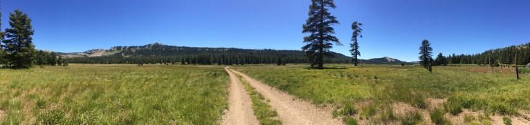 Field Site at Lake Van Norden in the Northern Sierra