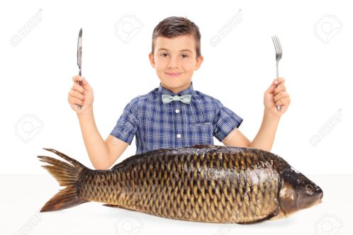 Little kid seated at table with a huge raw fish