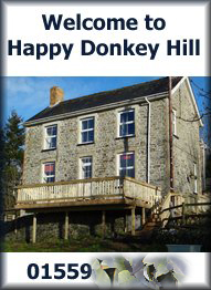 Happy%20Donkey%20Hill