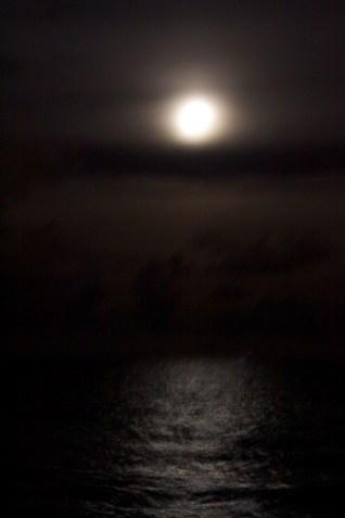 tokyo_blue_asian_restuarant_view_moonlight
