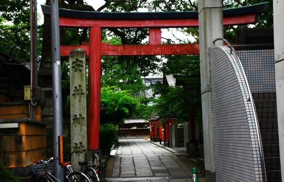 kyogo 043