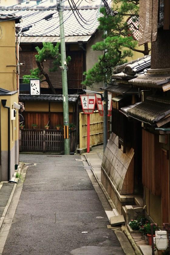 kyogo 082