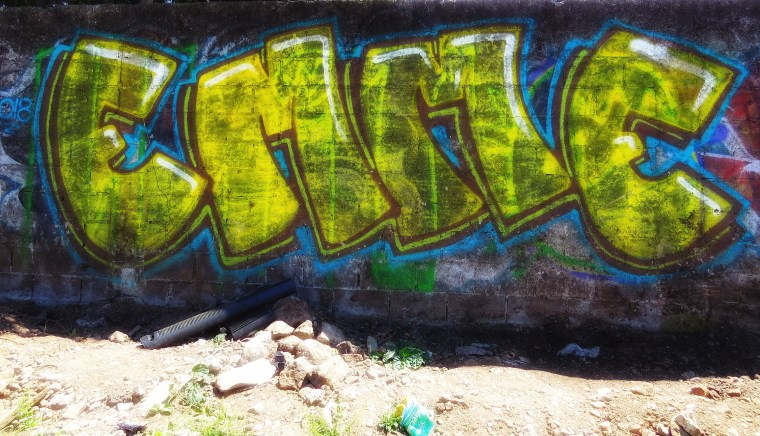 IMG_5542