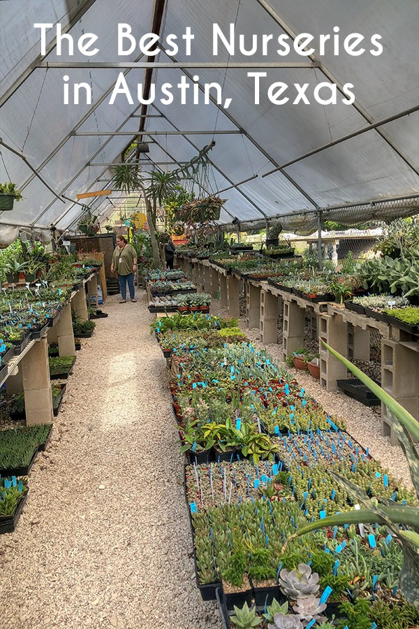 The Best Nurseries in Austin, Texas