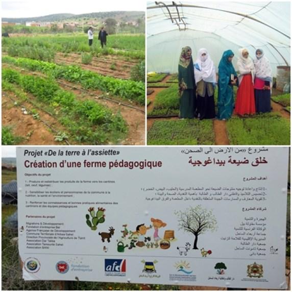 Confinement et Précarité au Sud dans le rural - l'agro-écologie de la Ferme pédagogique et Femmes semencières