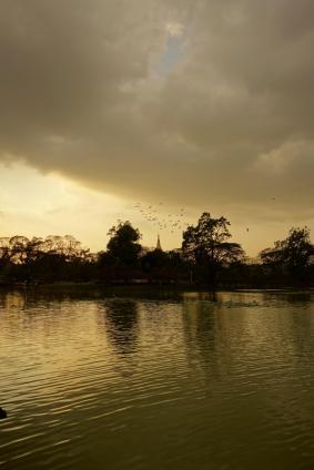 View onto Shwedagon Paya from Kandawgyi Lake