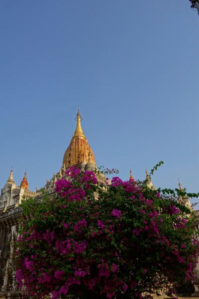 Top of the Ananda Phaya