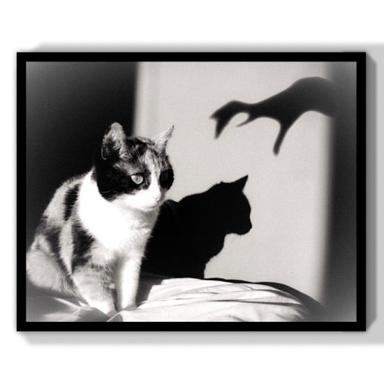 etsy gift darkness cinema cats art print