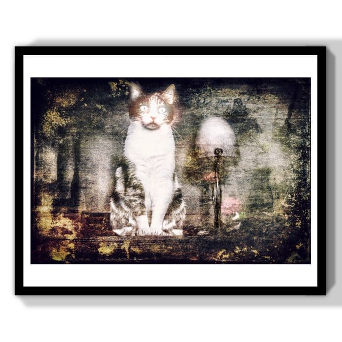 cat lover gift art print decor
