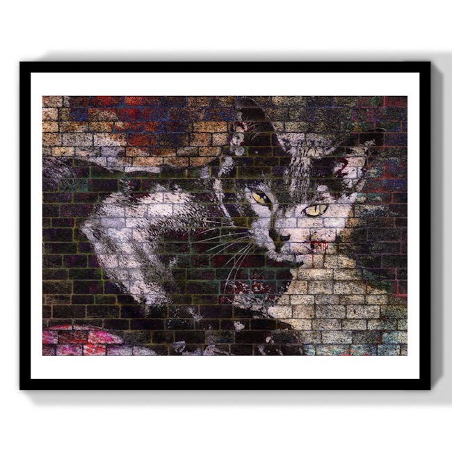 Best street art cat print gift