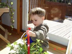 Félix, le jardinier.