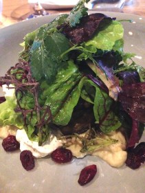Smoked Eggplant, baba ghanoush, sumac, labneh, cranberry and dressed leaves